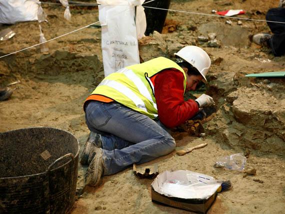 Paleontóloga realizando la excavación