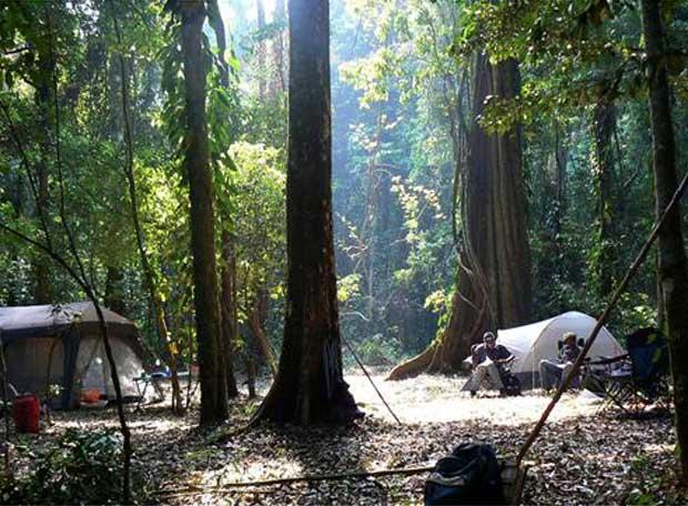 El campamento de los investigadores en el interior del Monte Mabu