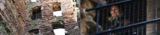 La foto y un detalle de la misma. Foto: Christopher Aitchison