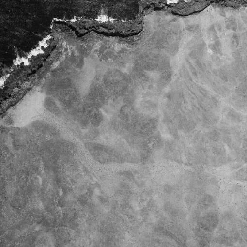 En 1961 en la zona de Yaiza no aparecen los círculos