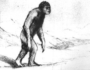 Yeti-Zeichnung